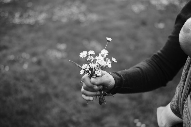 Human Hand One Person Real People Holding Human Body Part Flower Focus On Foreground Women Outdoors Lifestyles Nature Leisure Activity Plant Day Freshness Fragility Close-up Flower Head Adult People