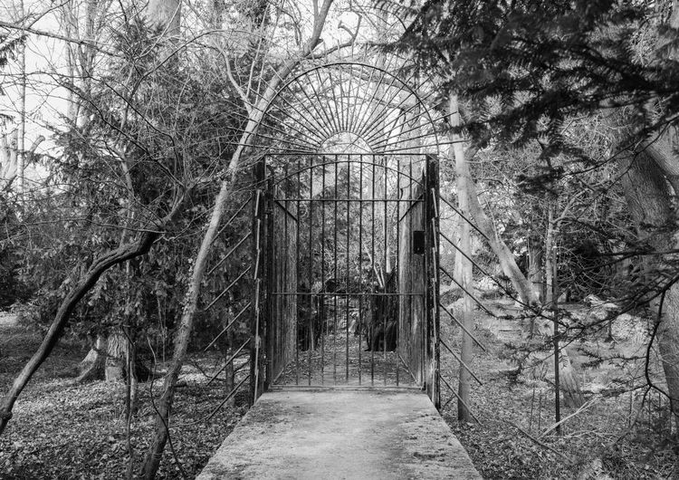 No People Arch Bridge Old Gate Architecture Footpath Outdoors Black And White