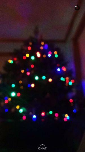 Best Christmas Lights 🎄 FavoriteTimeOfTheYear Lovechristmaslights💕