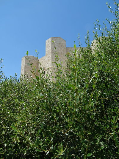 Andria Beautiful Nature Apuglia Architettura Castello Italy Misterious Castle Mistero Re Federico II