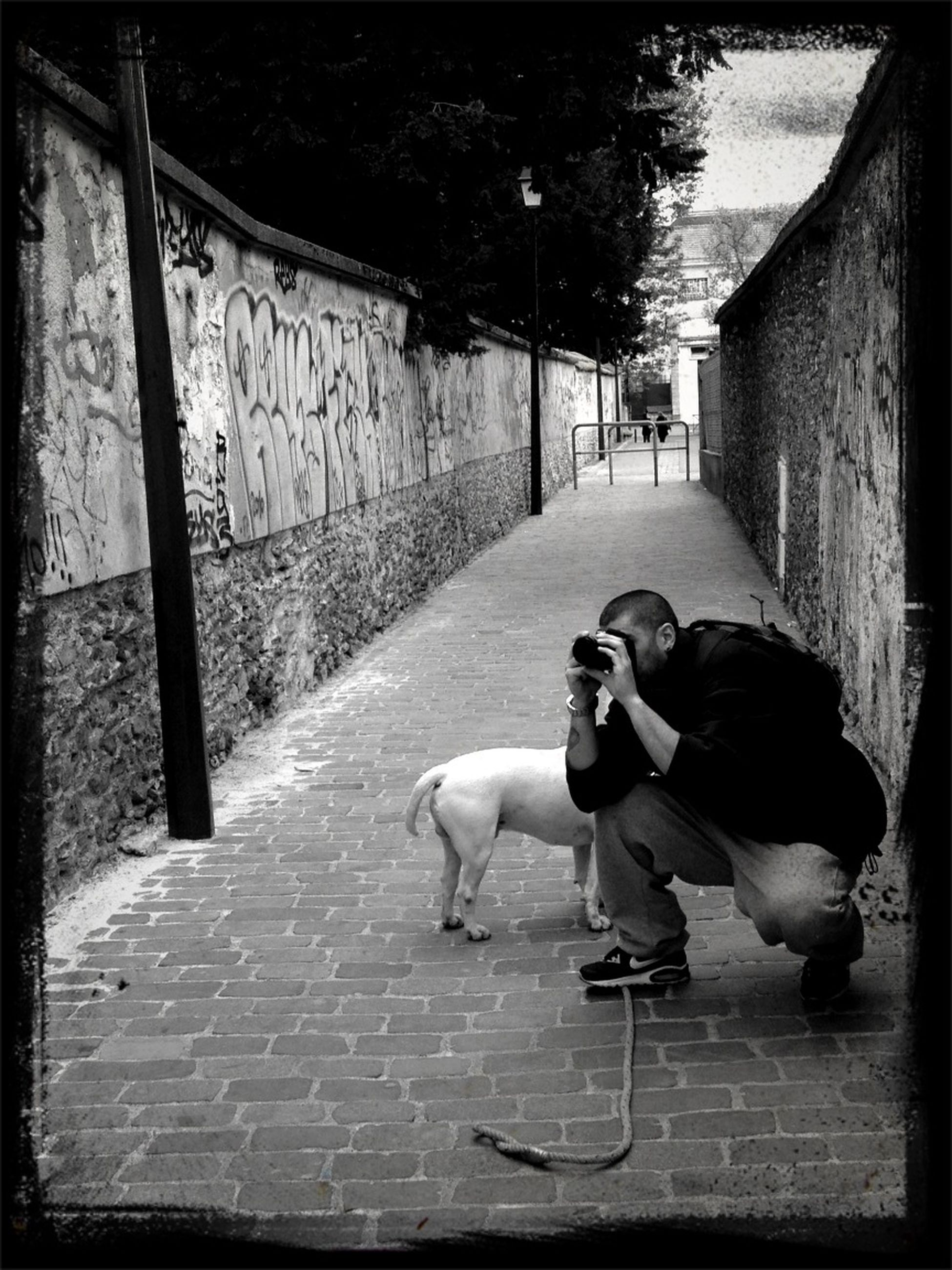 animal themes, transfer print, full length, pets, one animal, dog, domestic animals, auto post production filter, building exterior, built structure, walking, architecture, lifestyles, street, rear view, men, cobblestone, person