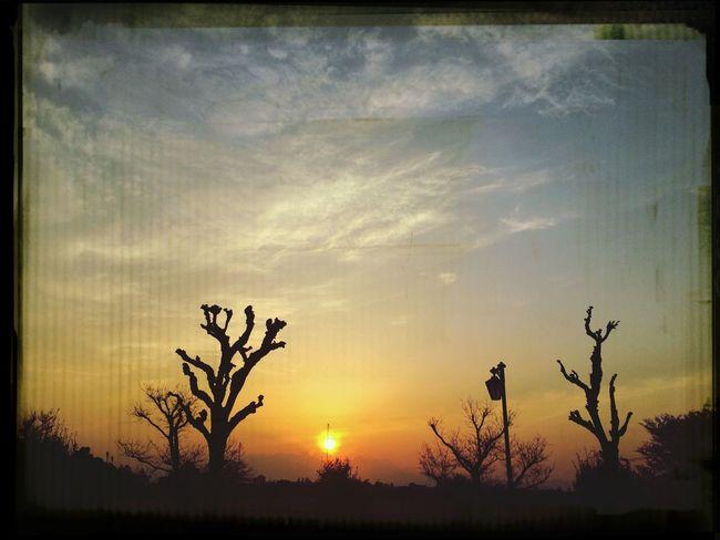 Beautiful Sunset Today Jalan-jalan