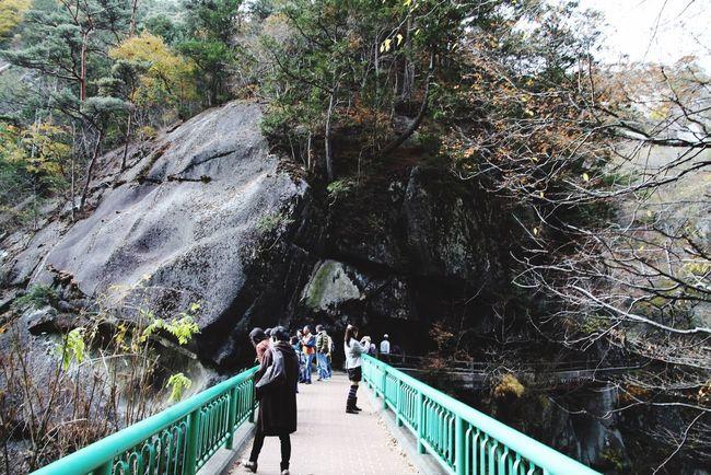 山梨県 甲府市 昇仙峡 紅葉 Japan Yamanashi Kōfu-shi Nature Forest Mountain Rock
