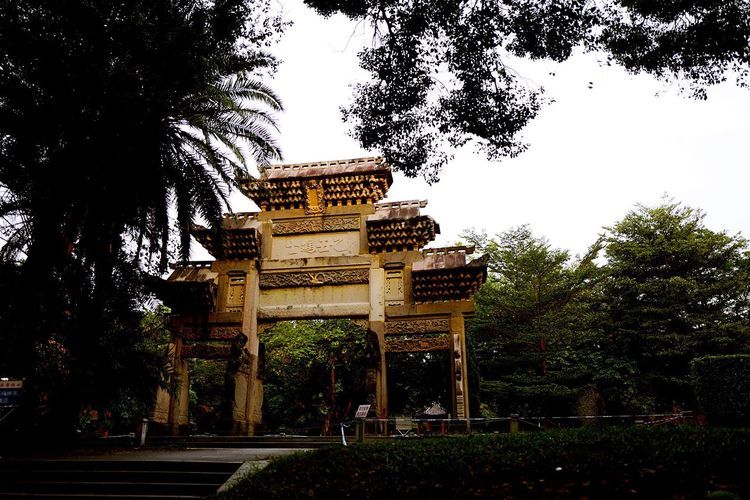 Sun Yat-Sen University Tree Architecture Built Structure Building Exterior Outdoors Travel Destinations Growth History Sky Day Nature No People City Gate Triumphal Arch Sun Yat-sen University Adapted To The City China Guangzhou BEIJING北京CHINA中国BEAUTY The City Light