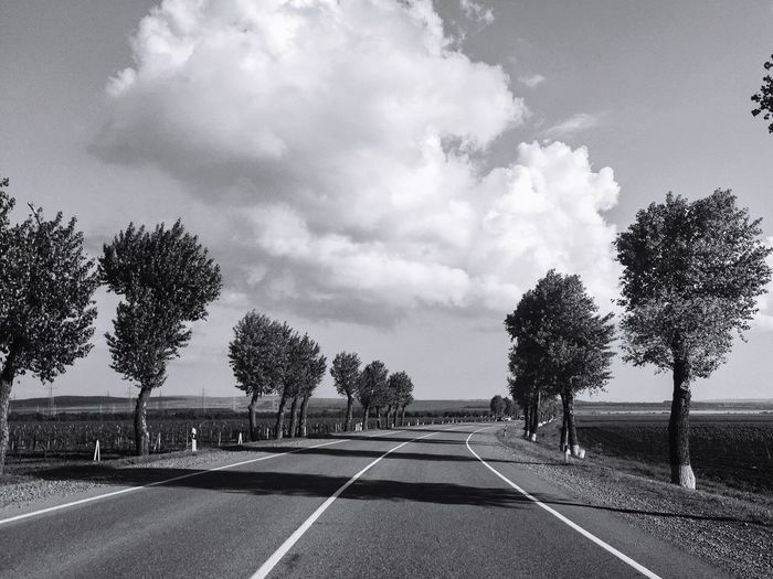 Empty road by trees against sky