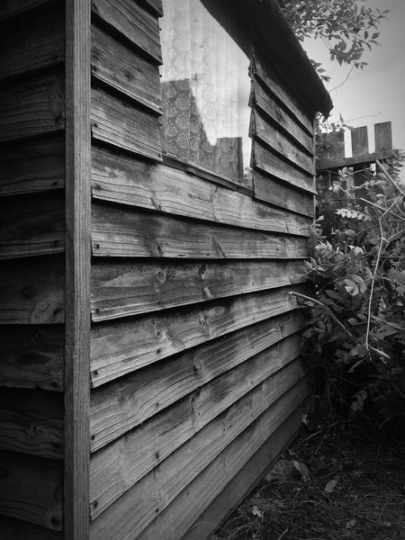 Shed Black And White glass Garden old Wood