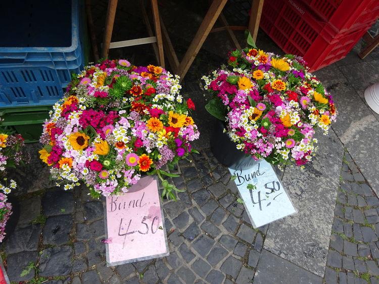 Bunte Blumen Day Flower Flower Market Freshness Multi Colored Nature