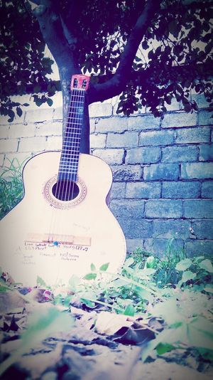 Mi vida, mi pequeña gordita*w* Playing Guitar Singer  Loveall