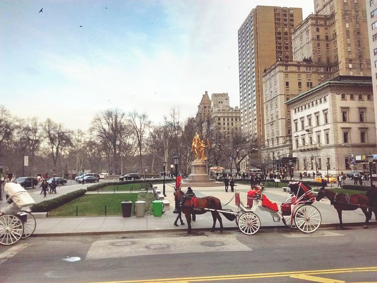 horse, architecture, building exterior, street, built structure, sky, real people, city, transportation, domestic animals, men, riding, horseback riding, horse cart, road, day, mammal, outdoors, tree, adult, people
