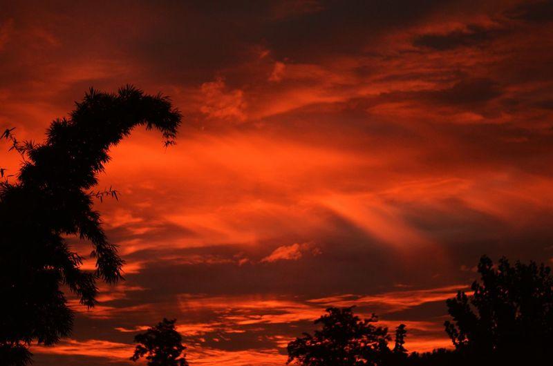 Red luminescence of aurora borealis atmospheric phenomenon