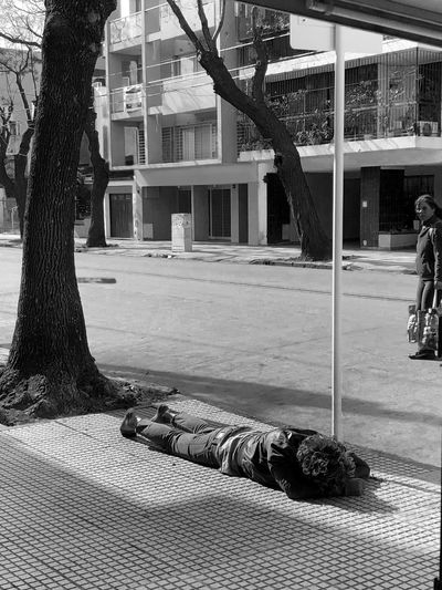 sleeping like a dog Tree Building Exterior Built Structure Architecture Plant Day City Nature Street Transportation Sunlight Outdoors Incidental People Real People