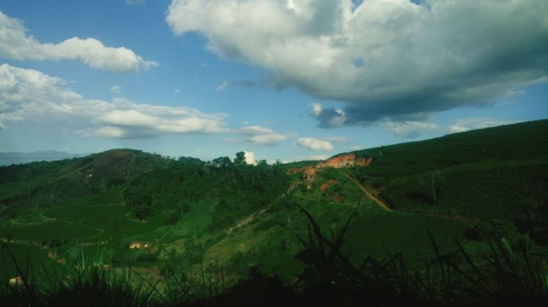 Hei Agriculture Landscape Rural Scene Nature Cloud - Sky Field No People Sky Scenics Cereal Plant Tree Outdoors Forest Beauty In Nature Green Color Hill Tea Crop Rice Paddy Day Be. Ready. EyeEmNewHere