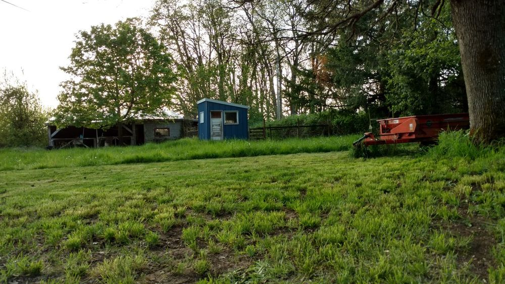 Aumsville Oregon Beauty In Nature Blue Shed Field Grass Grassy Green Color Landscape Manure Spreader No People Non-urban Scene Oak Outdoors Rural Scene Spring Tranquil Scene Tranquility Tree