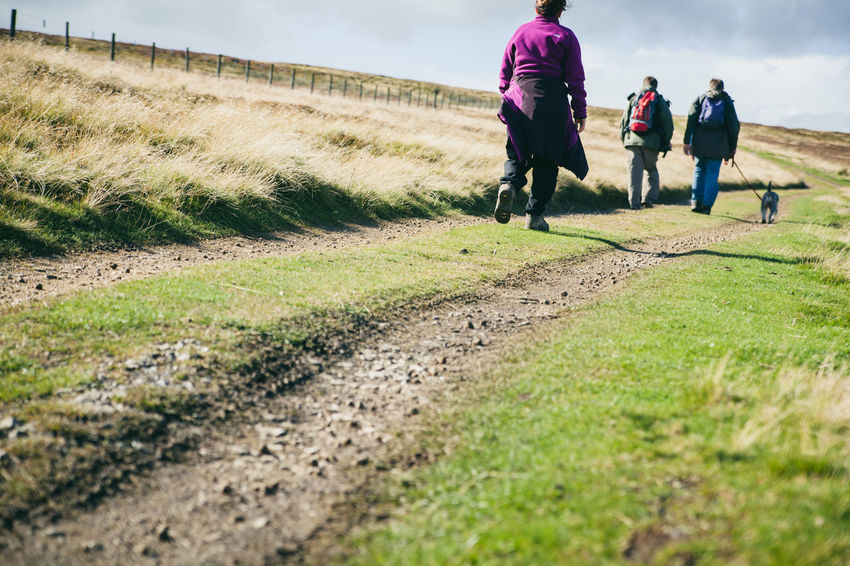 Activity Country Countryside Day Out Dog Walking England Exercise Fitness Fresh Air Healthy Hiking Hills Landscape Moors Nature Otley Outdoors People Rambling Sky Sunny Trail Walkers Walking Yorkshire
