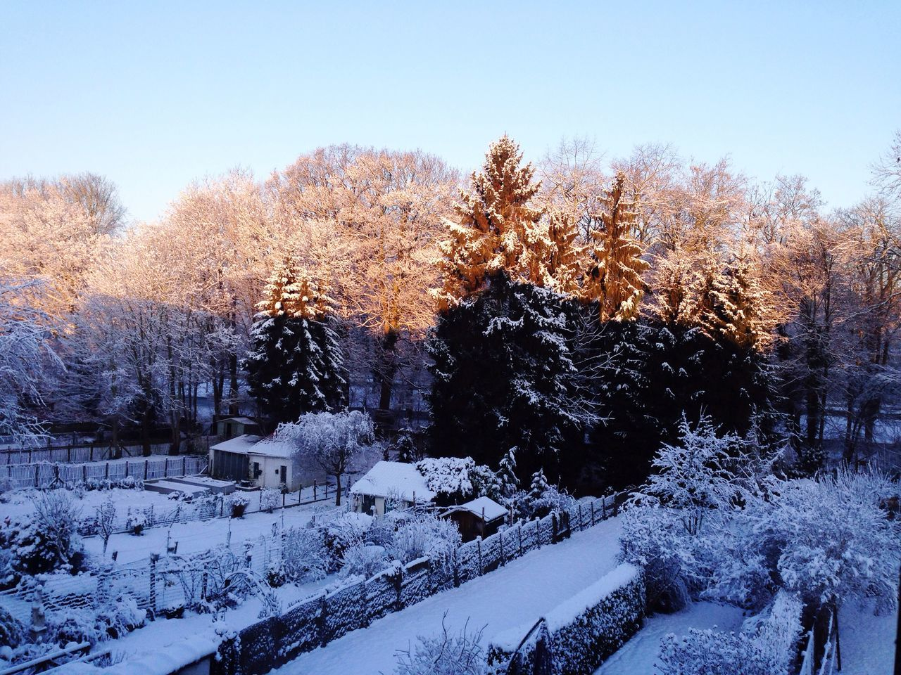 High Angle View Of Houses And Trees On Snow Covered Field During Winter