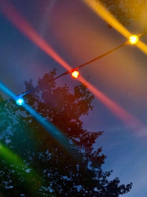 Coloured lights in autumn Plant Nature Night Lighting Equipment Outdoors Lens Flare Dusk
