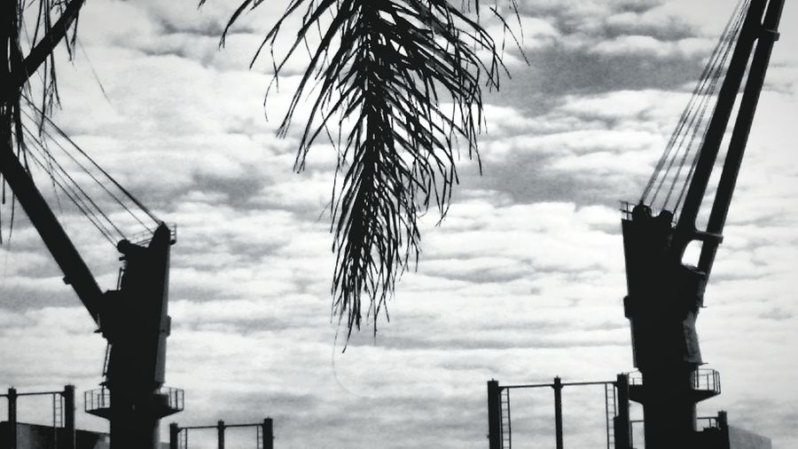 Nuvens Cloud - Sky Outdoors Day No People Nature Porto Alegre-RS Brasil ♥ Gruas Guindastes Black And White Photography The Street Photographer - 2017 EyeEm Awards The Great Outdoors - 2017 EyeEm Awards