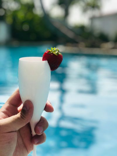 Champagne Swimming Pool Human Hand Hand Holding Human Body Part Food And Drink Focus On Foreground Berry Fruit Food Strawberry Finger Human Finger Freshness Day Fruit Close-up Healthy Eating