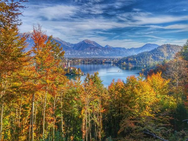 Autumn Colors Colors Of Autumn Fall Leaves Fall Beauty Outdoor Pictures Outdoor Photography Eyem Nature Lover EyeEm Best Shots - Nature HDR Nature View EyeEm Nature Lover Lake View Bled, Slovenia Bled Castle Eye Em Best Shots