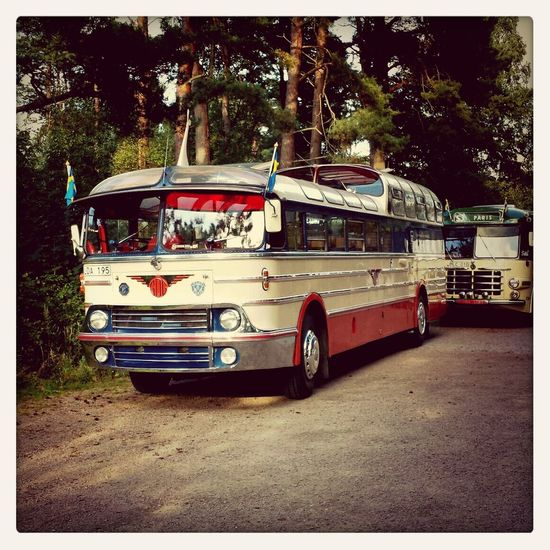 Bus Vintage Cars