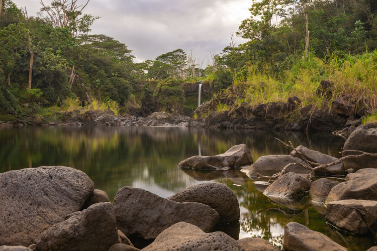 Water Rock Solid Rock - Object Plant Tree Nature Beauty In Nature Lake Tranquility Scenics - Nature No People Sky Day Reflection Tranquil Scene Cloud - Sky Non-urban Scene Growth Outdoors Flowing Water Jungle Travel Waterfall Hawaii EyeEmNewHere