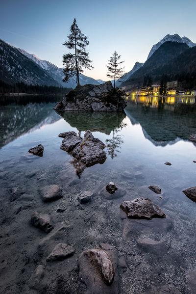 Alps Austria Berchtesgaden Berchtesgadener Land  Germany Hintersee Lake Mountain Mountain Range Ramsau  Reflection Reflections Rocks And Water Single Tree Trees Trees On Rock