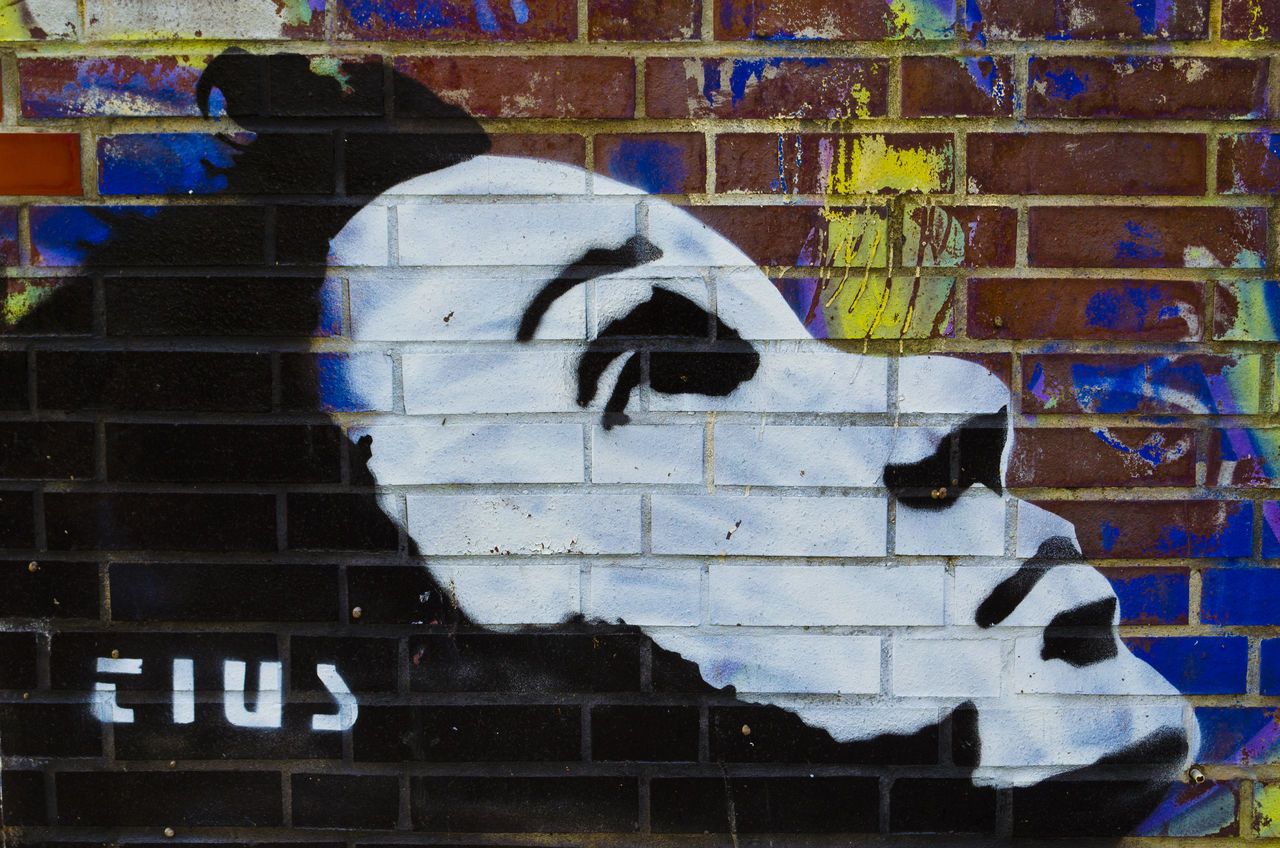 brick wall, architecture, graffiti, built structure, building exterior, outdoors, street art, day, no people, close-up, animal themes, mammal