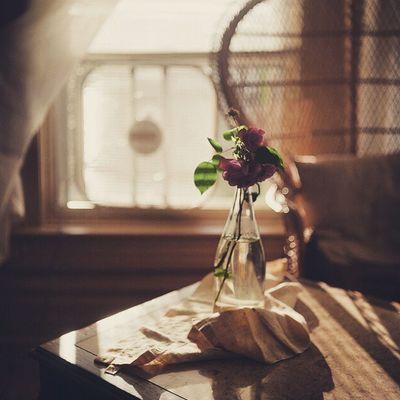 _ _ ثَمة أناس لا يَكفي لـ حُبهم قَلب وَاحِد لـ نَحبهم كَما ينبغي وكَما يرُوق بـ أناقـہ أرواحهُم ..! ~ ~ مساء_الخير 🌷☕ تصويري  مساء_الورد