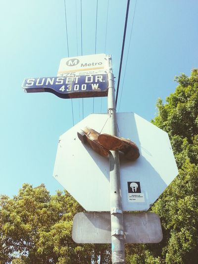 Road Sign Day Outdoors LosAngelesCity High Angle View City L.A. Bus Stop Shoegaze Shoestagram