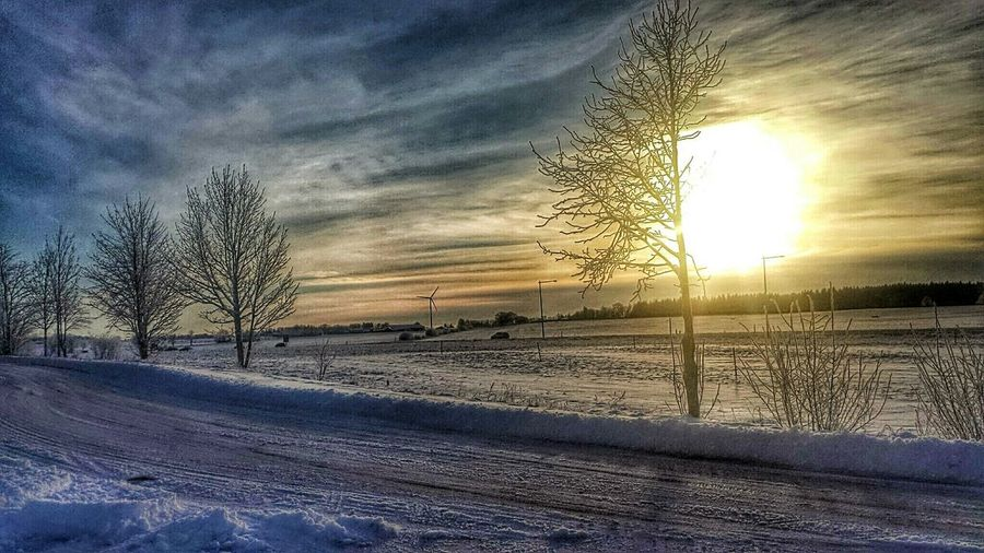 Winter Sun Magic Winter Winter Wonderland Landscape Sky And Clouds Sunlight From My Point Of View Naturelovers