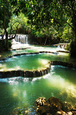 2017 Beauty In Nature Calcareous Sinter Day Forest Kuang Si Falls Kuang Si Waterfalls Landscape Laos Luang Phabang Luang Prabang Nature Outdoors Pool Scenics Tranquil Scene Tranquility Travertine Tree Water Waterfall World Heritage クアンシーの滝 ラオス ルアンパバーン