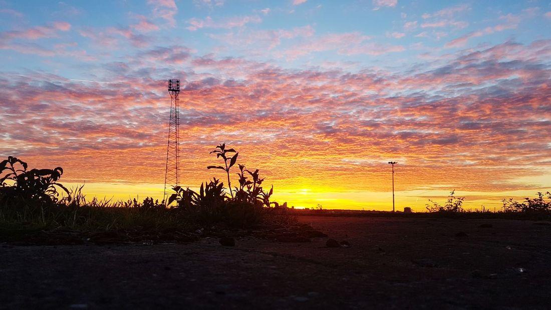 The Photojournalist - 2018 EyeEm Awards Wirral Peninsula EyeEmNewHere Coast To Coast EyeEm Best Shots Tranquil Scene Eye4photography  EyeEm Selects EyeEmBestPics Silhouette Morning Sky Sunset Tree Silhouette Sky Cloud - Sky Idyllic Scenics