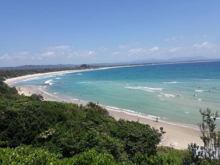 Water Tree Wave Sea Beach Sand Beauty Swimming Blue Sunny