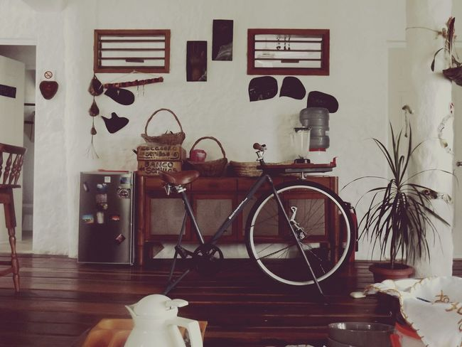 Indoors  No People Home Interior Bicycle Domestic Room Home Showcase Interior Shelf Day Greenhouse Green Technology 10 The Still Life Photographer - 2018 EyeEm Awards