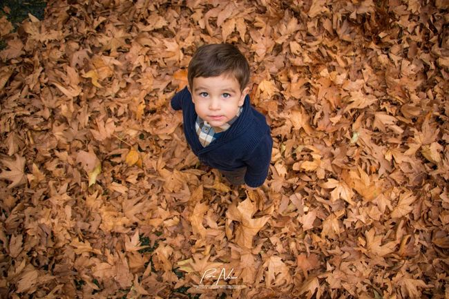 Baby Babyboy Fall Colors Fall Beauty Fall Leaves Autumn Leaves Child Outdoors Portrait Childhood PouriaNaseri© PoucoFotografia©