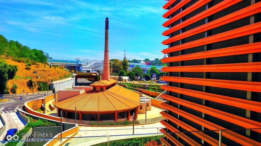 Italy❤️ Roma Tree Sky Architecture