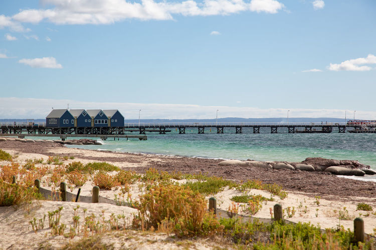 the longest jetty in Australia (2km) Sky Architecture Built Structure Water Cloud - Sky Nature Day Building Exterior Land No People Sea Scenics - Nature Tranquil Scene Beauty In Nature Beach Outdoors Tranquility Environment Bridge Jetty