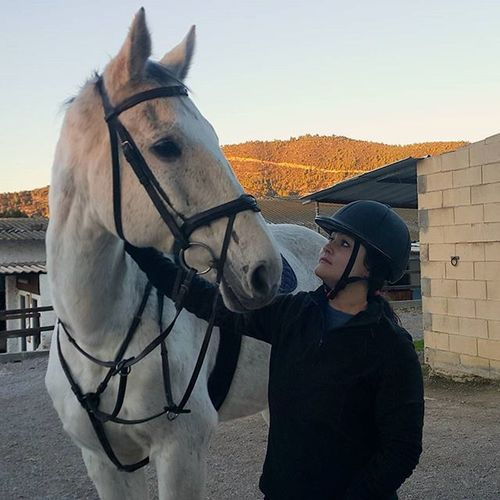 Love Dressagerider Horselovers Horseadict Instahorse Passion Horseriding Mylife Tarantino Horsegirl Equine Funnytimes Equinephotography