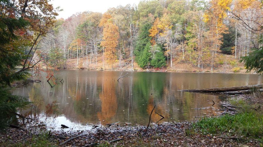 Rose Lake,