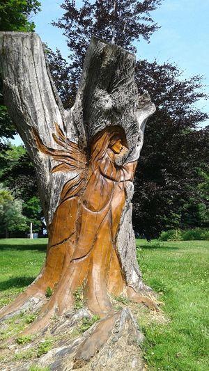 Hidden Gems  Mississauga Ontario Canada Tree Trunk ArtWork Creative Nobody Showcase July