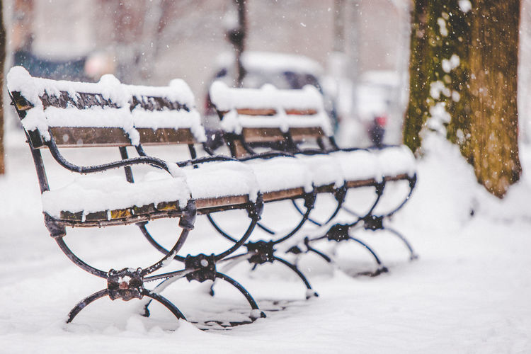 Bench Central Park Manhattan New York Park Bench Close-up Cold Temperature Day Extreme Weather Frozen Nature Newyorkcity No People Outdoors Park Benches Snow Snowing Snowstorm Winter Winterwonderland Adventures In The City