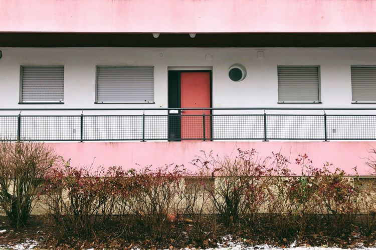 Siemensstadt Bauhaus German Architecture Façade Built Structure Architecture Building Exterior Building Window No People Pink Color