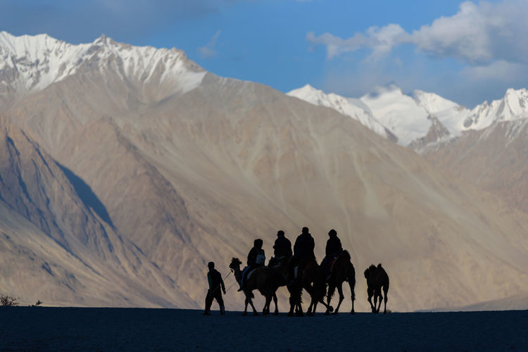 Group of people riding camels on mountain