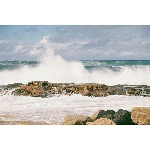 TBT  | Big wave Moloka'i days. 😚 Molokai Hawaiinei Hivibes Bigwaves Papohaku 35mm Filmphotography Analogphotography Flickrfiles