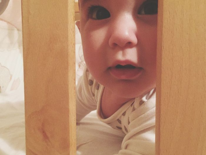 Prison break Baby Indoors  Front View Childhood Close-up Home Interior One Person Curtain Portrait People Day Real People Looking At Camera