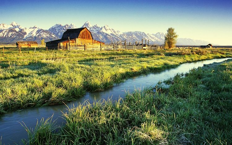 Nice farm