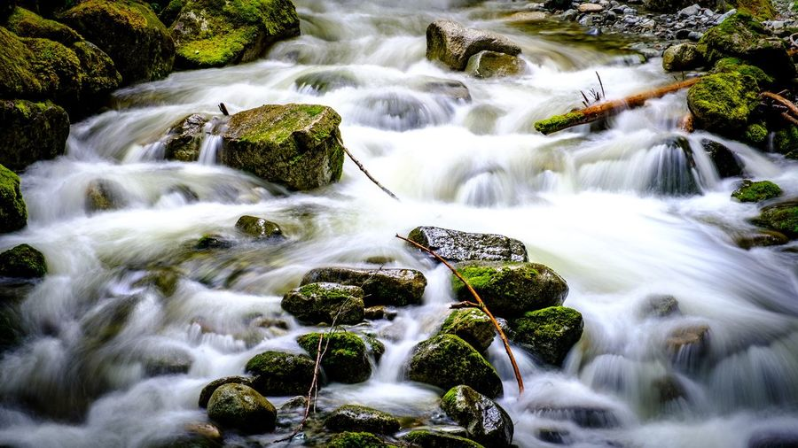 Snowmelt Riverflow Riverside River View Water Beauty In Nature Scenics - Nature Motion Long Exposure Rock Blurred Motion Waterfall Rock - Object Forest Flowing Water Flowing Outdoors