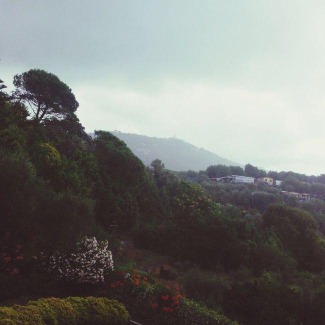 La casa al mare ? Panorama Fuori Piove Bruttotempo:po Chiesa Santa Giulia]