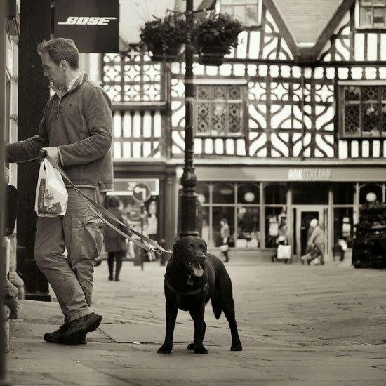 Guarding your PIN Black & White Dog Walking Banking Pin Guard Duty Guard Dog
