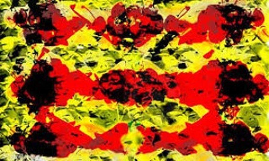 """Pintura digital de sobreposição impressa em tecido """" desejo"""""""